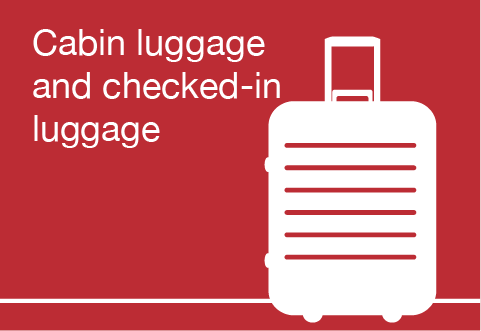 Cabin luggage and checked-in luggage